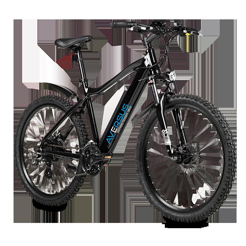 Aversus E-Bikes E-Scooter